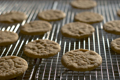 Spice up your Snickerdoodle
