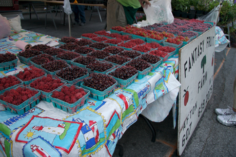 Greenmarket Berries