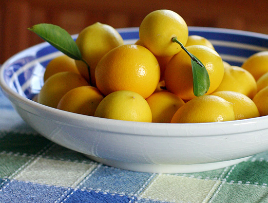 Lemon Tips, Tricks and Recipes