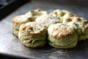 Fluffy buttermilk biscuits out of the oven | pinchmysalt.com