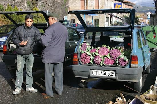 Cauliflower for Sale in Randazzo, Sicily
