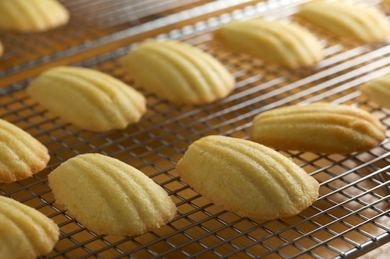 Madeleines Out of the Oven