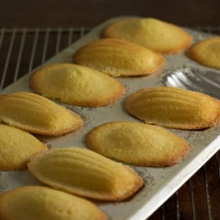 More Madeleines