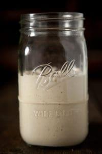 How to Make a Sourdough Starter: Day 5 Pinch My Salt