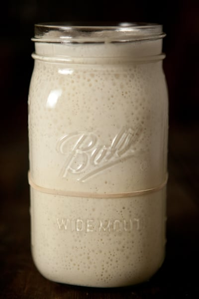 How to Make a Sourdough Starter: Day 7 | pinchmysalt.com