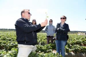Talking Strawberries at Elkhorn Ranch