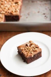 Sourdough Chocolate Cake with Chocolate Cream Cheese Frosting pinchmysalt.com