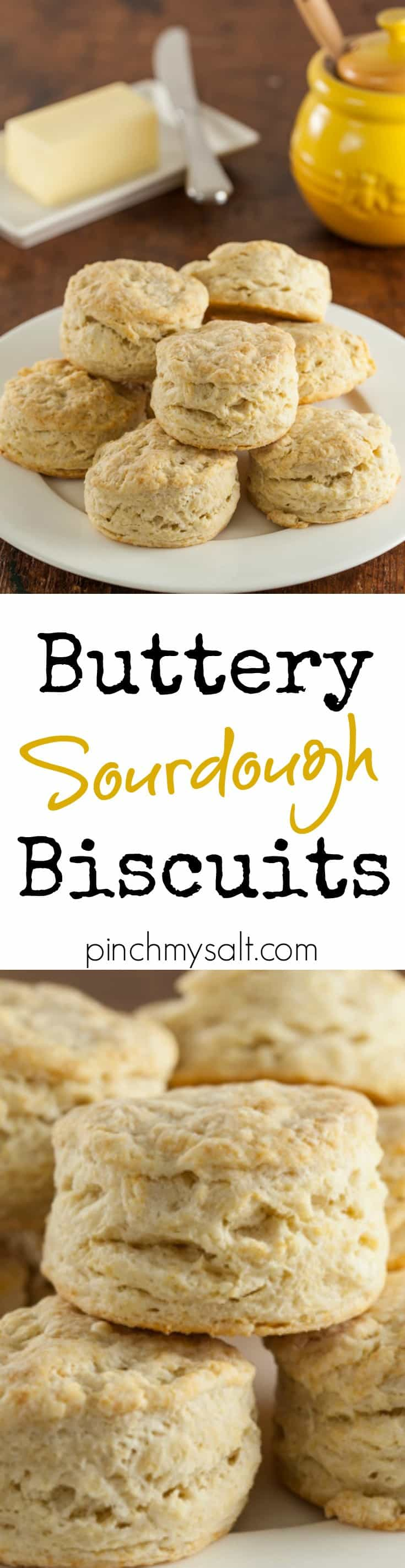 sourdough biscuit recipes