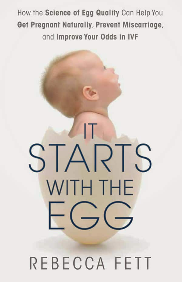 Book Cover for It Starts with the Egg by Rebecca Fett