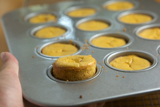 Mini Pumpkin Cheesecake popping out of pan | pinchmysalt.com