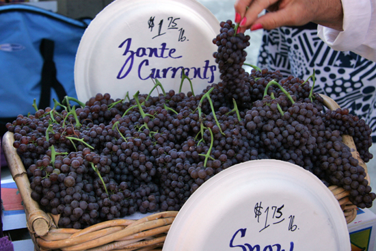 Farmer's Market Currants