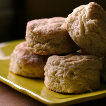 The BEST fluffy buttermilk biscuits from scratch | pinchmysalt.com