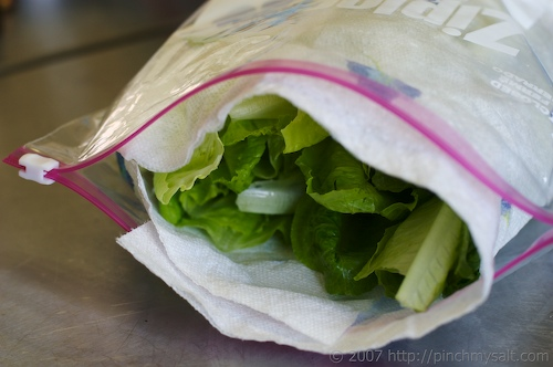 Lettuce in Plastic Bag