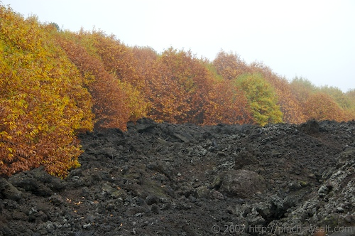 Autumn on Etna 2