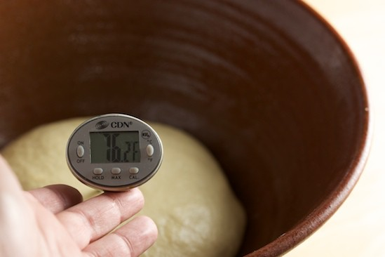 Checking Temperature of Kaiser Roll Dough