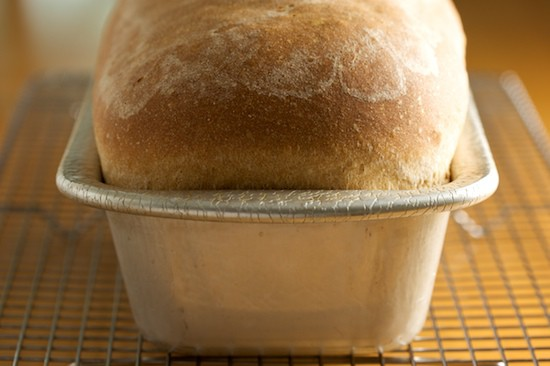 Large Loaf of Light Wheat Bread