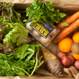 Our weekly CSA box