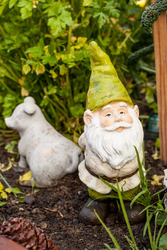 Gnome in Garden at Pinch My Salt