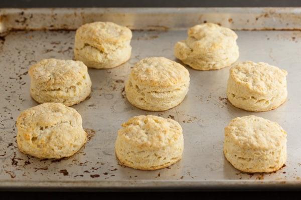 Baked biscuits | pinchmysalt.com